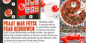 Praat mar Frysk -  Pakketsje foar Bedriuwen